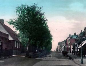 A picture from shortly after Alton House was built. It's the building with white windows on the left behind the trees (which no longer exist unfortunately) at the bottom of The Terrace at the Cambridge (west) end of Newmarket High Street (see below or click image for source and acknowledgements etc., ref. Image 1).