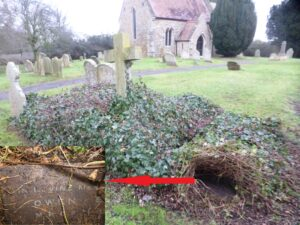 The grave of Owen Mead at Mepal, in a row of five Owen family graves covered with ivy - the inset shows the corner of Owen's memorial stone with some of the ivy lifted (see below or click image for source and acknowledgements etc., ref. Image 3).